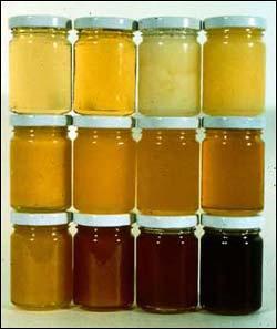 Med – široká ponuka